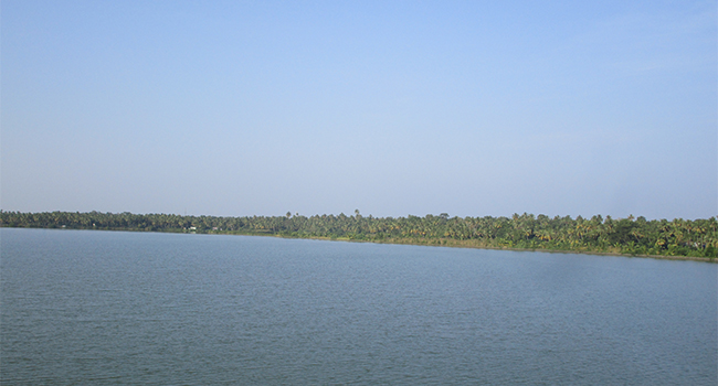 Aqua Farm at Poothotta, Ernakulam district, Kerala.
