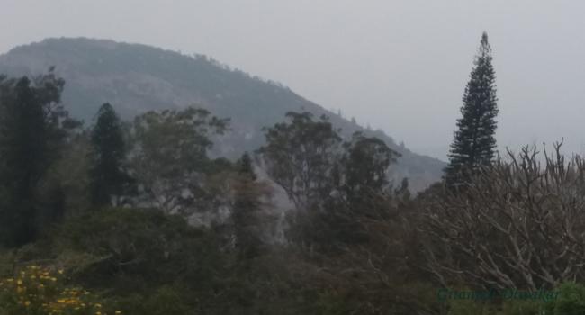 A few of the Nandhi Hills